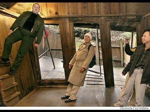 """The """"Mystery Spot"""" And """"Oregon Vortex"""": Pictures, Video, Story, Explanation"""