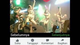 Download Video Heboh, Foto-foto Penari Striptis Sexy Dancer Nyaris Bugil Bergoyang di Gelora Joko Samudro Gresik MP3 3GP MP4