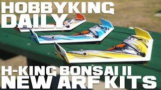 H-King Bonsai Ii Epp Wing 600mm - New Arf Kits - Hobbyking Daily
