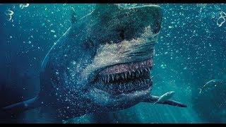 Токсичная акула (2017) Трейлер к фильму (ENG)