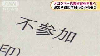 東京五輪 テコンドー強化合宿中止へ(19/09/16)