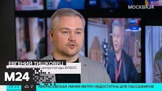 Резкое похолодание пришло в Москву - Москва 24