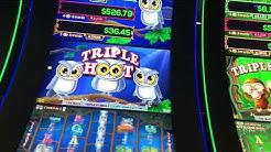 Live play on triple hoot slot machine