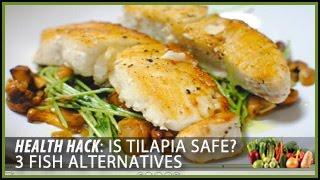 Is Tilapia Safe? 3 Fish Alternatives: Health Hacks- Thomas DeLauer