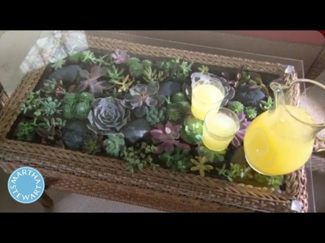 Learn Do How To Make A Terrarium Coffee Table Home How To