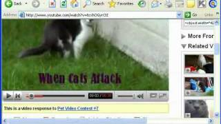 Download Youtube Videos to your PC, iPod, PSP, Mobile CRACKED