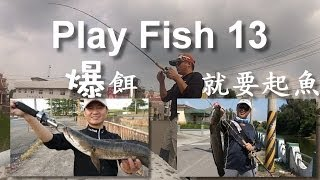 Play Fish 13, Snakehead, Size is Matter 雷強 爆餌就要起魚