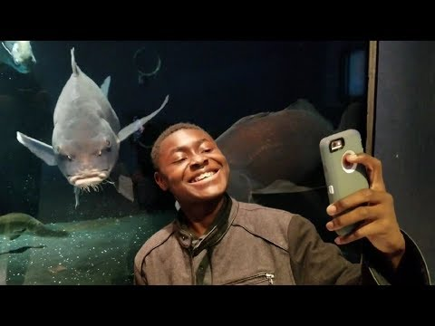 Selfies with MONSTER FISH! - Exotic Animal Exhibit Tour (Monkeys, Lizards, Snakes, and More!)