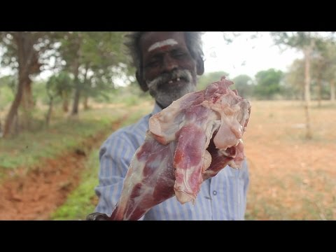 lamb and mutton (food)