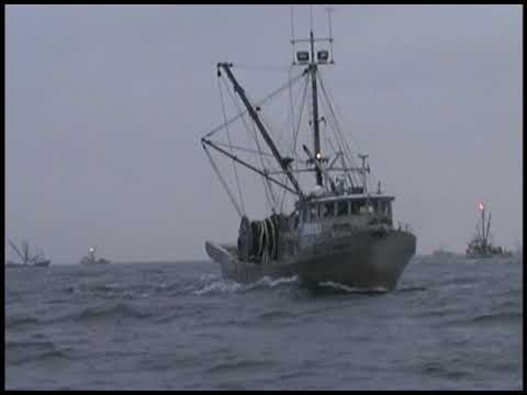 BC FISHERMANS LIFE 2 Commercial Fishing