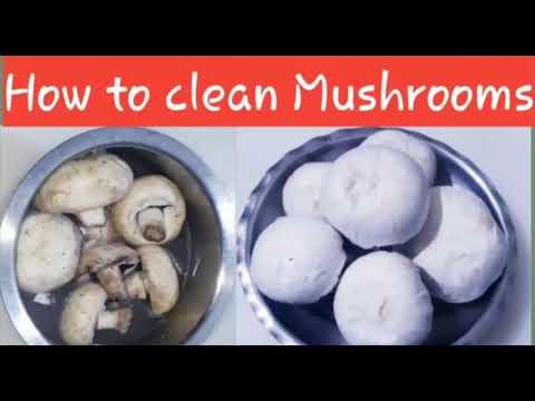 मशरूम साफ करने का सही तरीका - How to Clean Mushrooms