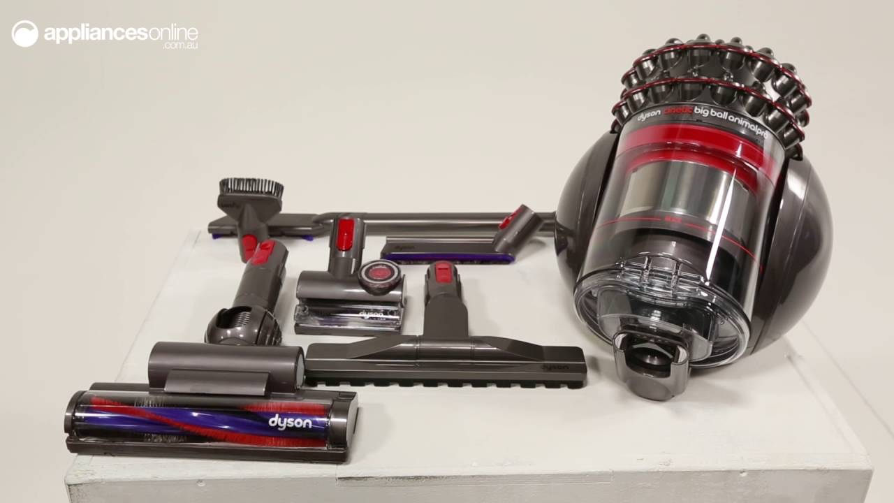 Dyson 214893 01 Cinetic Big Ball Animal Pro Barrel Vacuum