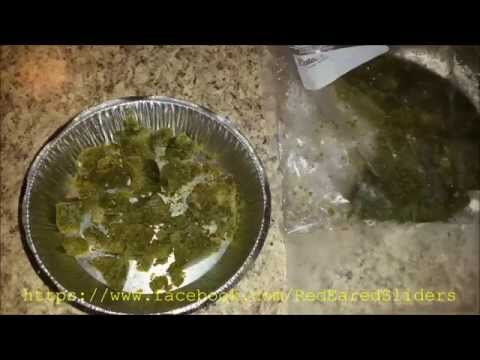 How To Make Frozen Turtle Food
