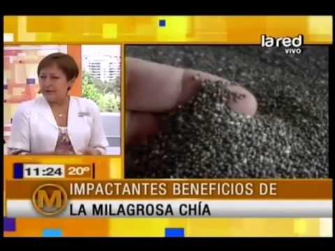 Impactantes beneficios de la milagrosa Chía