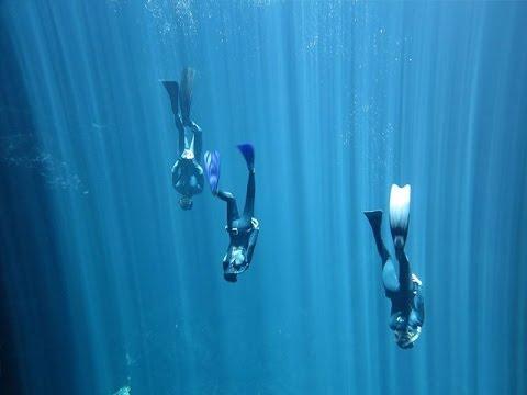 Freediving Mexico (Apnea Diving) courses