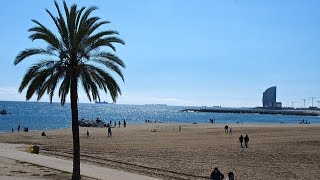 15 Free Things To Do In Barcelona – Barcelona Connect – Barcelona For Free
