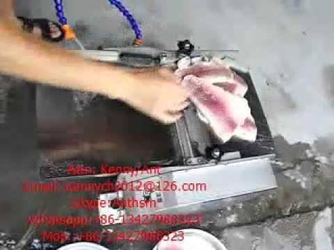 Yp 30 fish peeling machine fish skinning machine skinner for Fish skinner machine