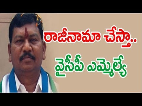 Saluru YCP MLA Going To Resign For Special Status || రాజీనామా చేస్తా ...వైకాపా ఎమ్మెల్యే