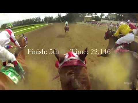 Hialeah Park Quarter Horse Jockey Cam: EquiSight Ride the Race in HD