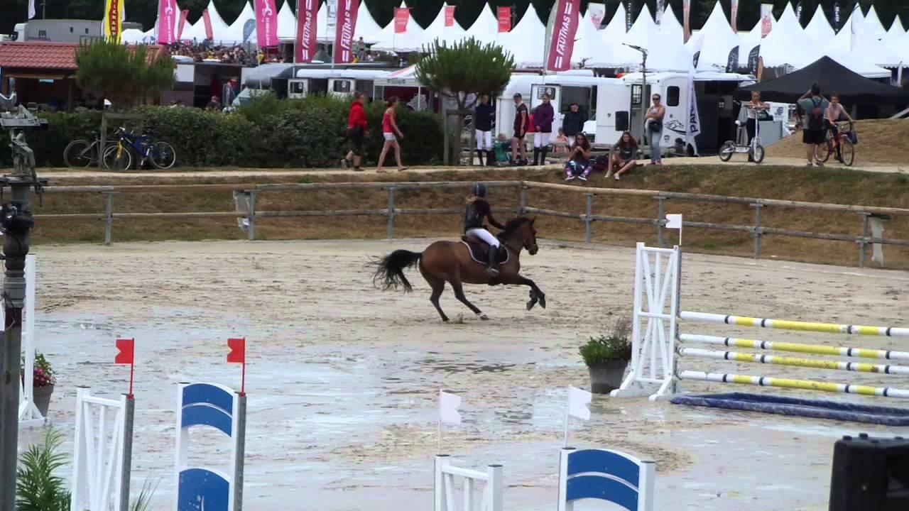 poney 1 b