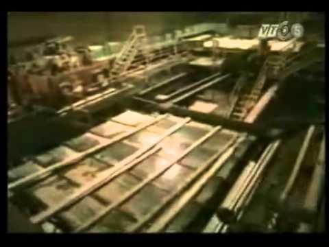 Quy trình chế biến gỗ thông (wood processing)