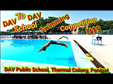 DAV To DAV School Swimming Championship 2019 🏊♂️