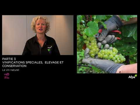 UA3-Video 9 - Le vin naturel