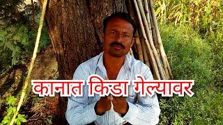 Video Kanatil kida,कानात किडा गेल्यावर उपाय download MP3, 3GP, MP4, WEBM, AVI, FLV Agustus 2018