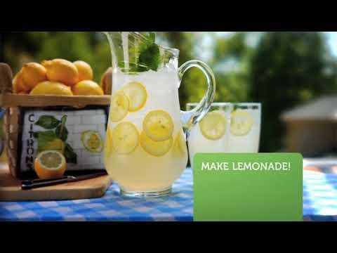 LEMONADE - Simply Fresh Fruit