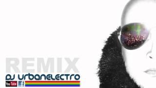 Babak Shayan   Flowers DJ Urbanelectro Reconstruction Mix 2011