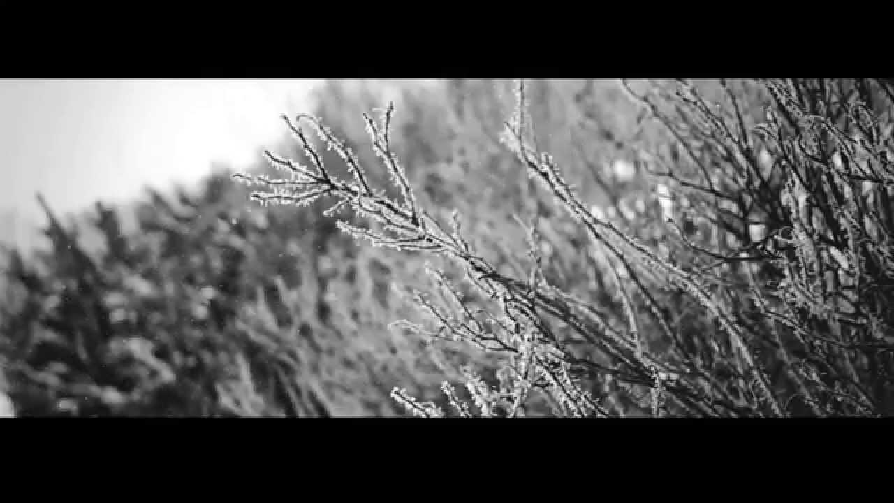 Download MXP - KREIS (OFFICIAL VIDEO)