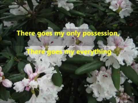 There Goes My Everything lyrics - Engelbert Humperdink