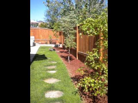 DIY Backyard project 2009  木を植えること