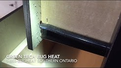 Bed Bug Exterminator Toronto On-Site Video Series Episode 1