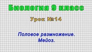 Биология 9 класс (Урок№14 - Половое размножение. Мейоз.)