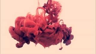 Paul Kalkbrenner - Mango (Vamos Art Rework)