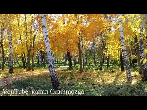 Красивая Осень Волшебный листопад и лучшие фотоиз YouTube · С высокой четкостью · Длительность: 1 мин51 с  · Просмотров: 884 · отправлено: 01.08.2014 · кем отправлено: Grammozga