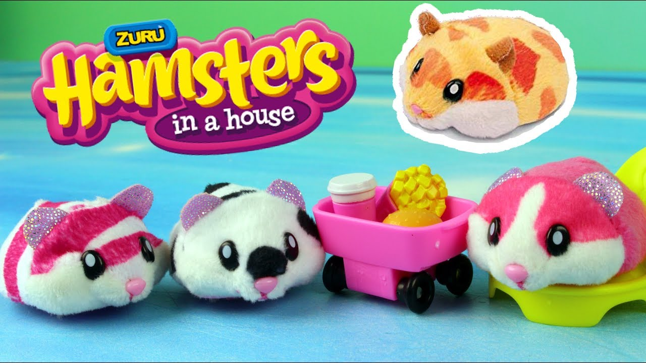 hamsters in a house sverige