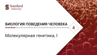 Биология поведения человека: Лекция #4. Молекулярная генетика, I [Роберт Сапольски, 2010. Стэнфорд]