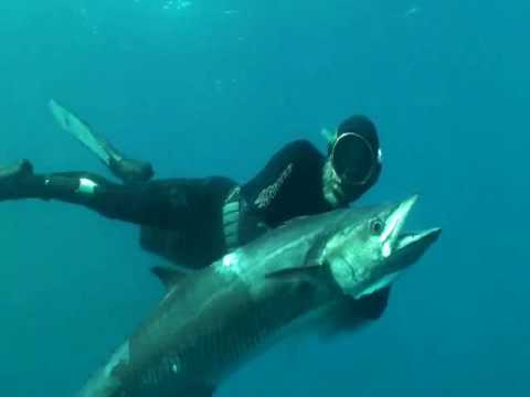 Offshore spearfishing in WA