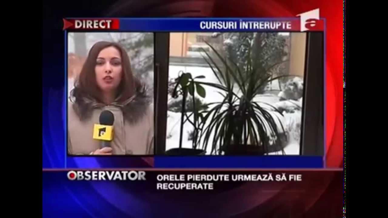 În Vrancea nu se închid școlile  |Se Inchid Scolile