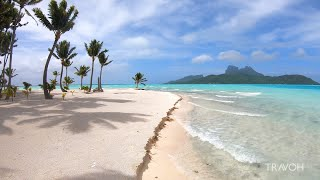 Tropical  Sland Walk Ocean Beach Nature Motu Tane Bora Bora French Polynesia 🇵🇫 4K Travel