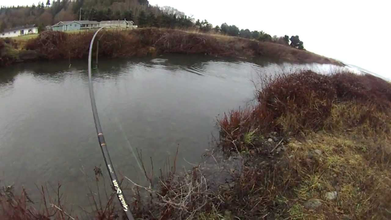 Wicked lures catching steelhead 2011 mov youtube for Steelhead fishing lures