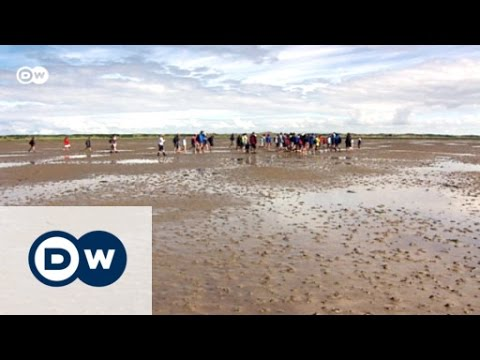 World Heritage Mission: Wadden Sea | Euromaxx