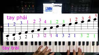 Hướng dẫn luyện ngón gam đô trưởng legato và stacgato để chơi đàn tốt P1 -Vĩnh Lộc A-Bình Tân TPHCM