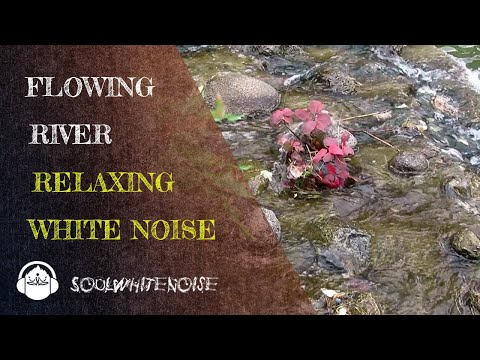 Calm River Flowing ❌ Relaxing Nature Sounds   White Noise Sleep Sounds