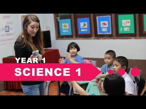 year-1-science,-lesson-1,-living-and-nonliving-things