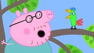 小猪佩奇 第二季 | 全集合集 | 1-12集 连续看 | 粉红猪小妹|Peppa Pig | 动画