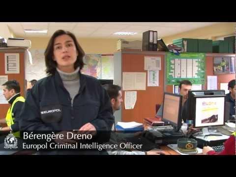 OPERATION OPSON, Europol Criminal Intelligence Officer