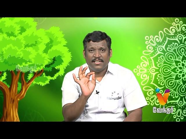 Marunthilla Maruthuvam |Putham Puthu Kalai| (10/07/2017) | [Epi-1044]